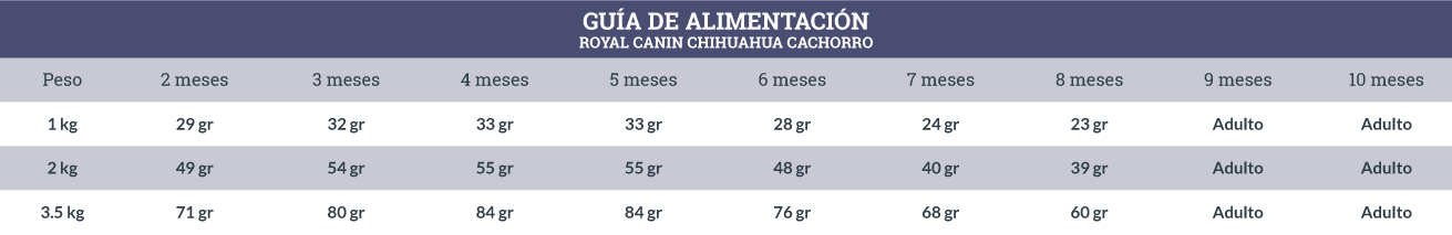 Guía de Alimentación Royal Canin Chihuahua Cachorro