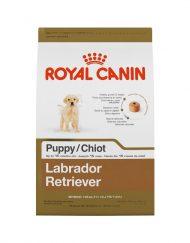 oyal Canin Labrador Retriever Cachorro